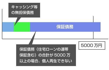 保証債務(住宅ローンの連帯保証を含む)は5000万円要件の除外対象にはならない-説明図
